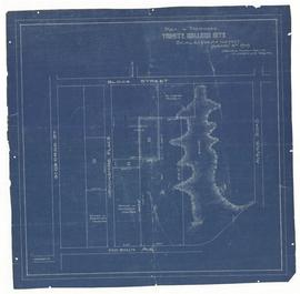 Plan of Proposed Trinity College Site